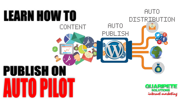 WordPress Automation Coaching Training Program by Guaripete Solutions