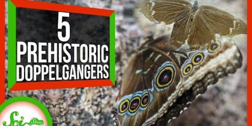 5 Strangely Familiar Ancient Animals