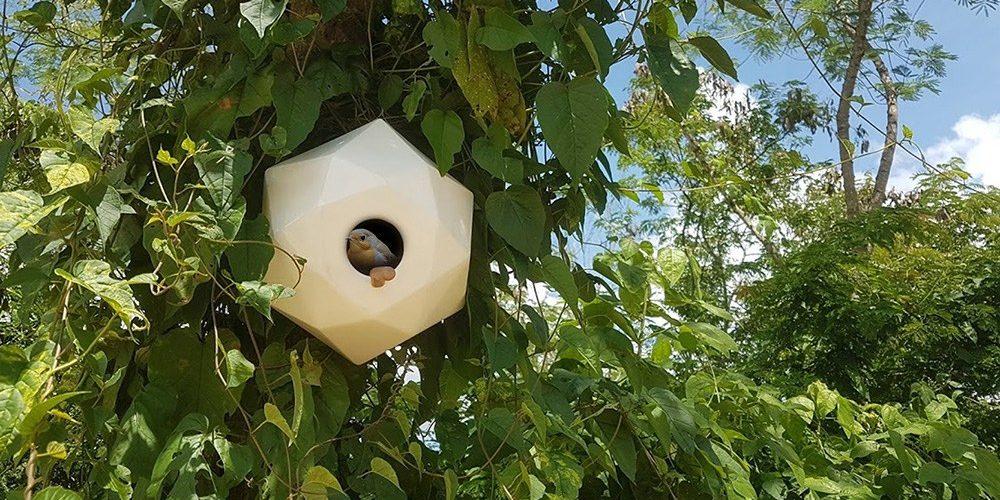 KUKU, una casa nido geométrica para la conservación de aves en las ciudades