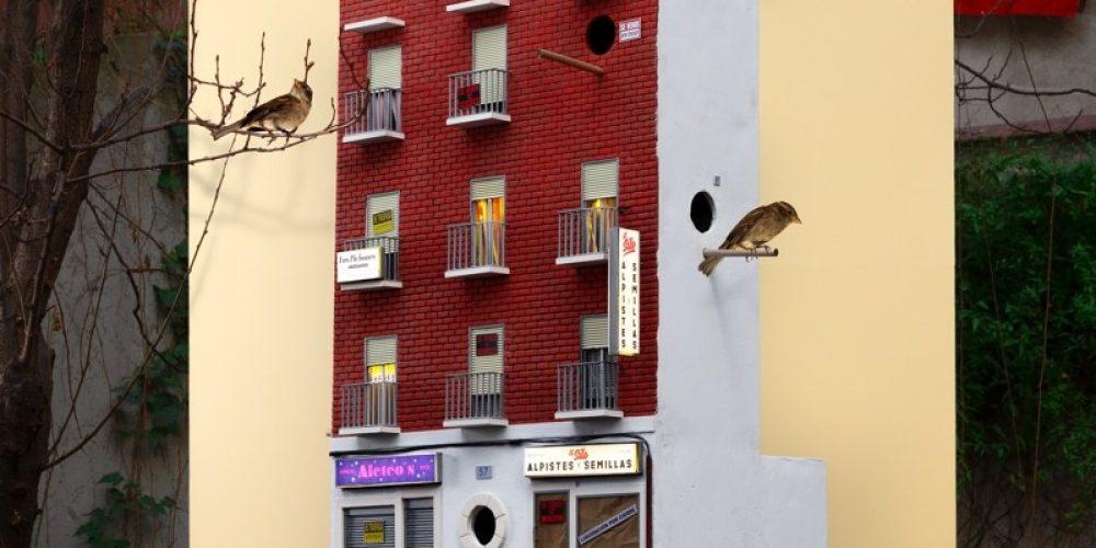 Esta campaña alerta sobre la desaparición de los gorriones de nuestras ciudades