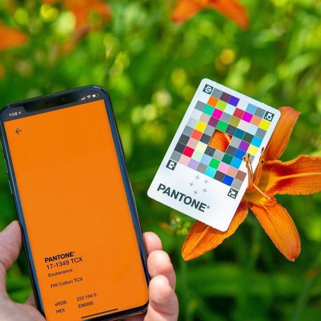 Pantone Color Match Card, la tarjeta de Pantone para capturar colores en el mundo real