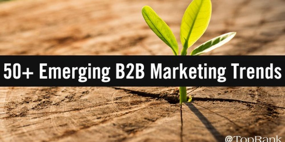 50+ Top B2B Marketing Insights You Need To Know Today