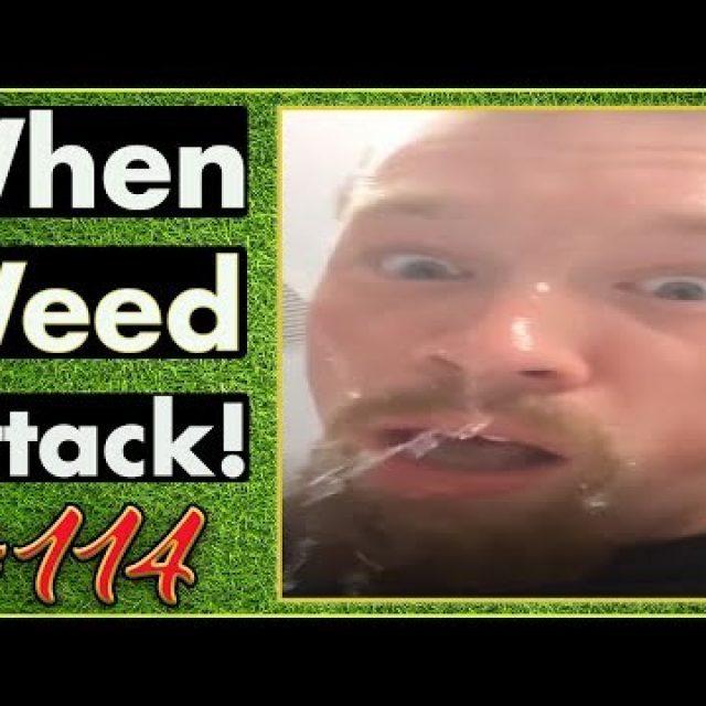 Smoking Weed / Weed Fail Compilation / WEED MEMES AND Weed Pranks! #114