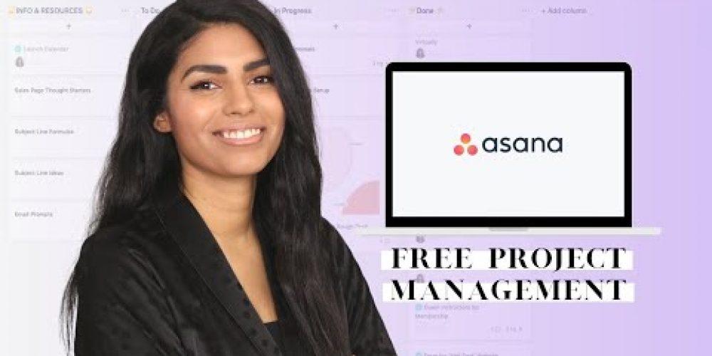 How I Use Asana | Freelance Social Media Manager & Course Creator